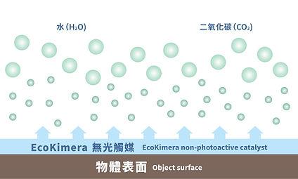 T4H_Web Banner_Ecokimera_5.jpg