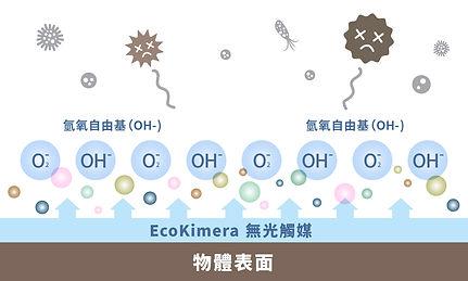 T4H_Web Banner_Ecokimera_4.jpg