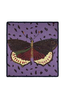 Etole Pom Papillon
