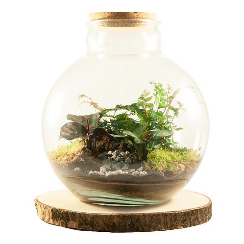 fles ecosysteem