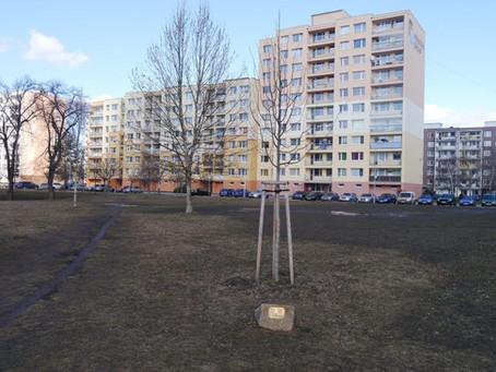 Park přátelství, odpočinkové i památné místo v jednom, jež Libor Lesák se svým týmem připravuje, nám