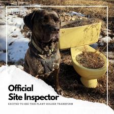 Official Inspector.jpg