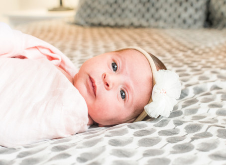 Newborn Session - Baby Lily