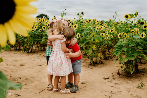 Sunflower session in Yardley, PA