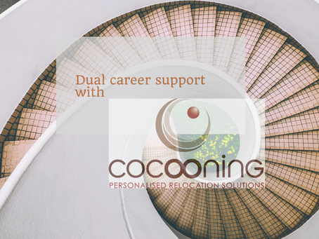 Job search support - Dual career No 1