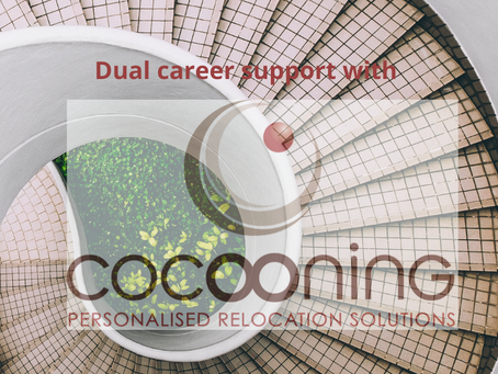 Job search support - Dual career No 3