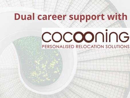Job search support - Dual career  No 2