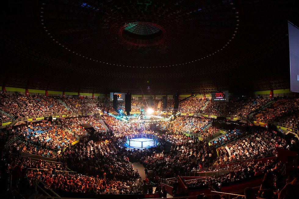 UFC arena.jpg