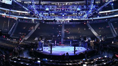 UFC stadium.jpg