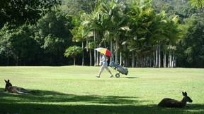 Boomerang Farm Golf Course