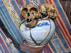 Montagnard monkey skulls from the Vietnam War