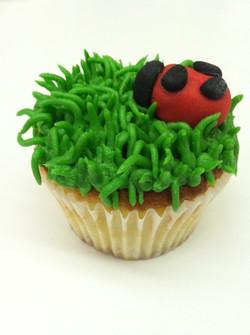 Lady Bug cupcakes