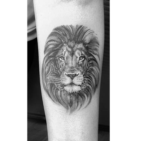 lionpetit.jpg