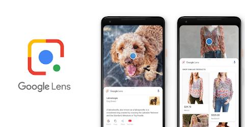 Google Lens получила новый дизайн и полезные функции