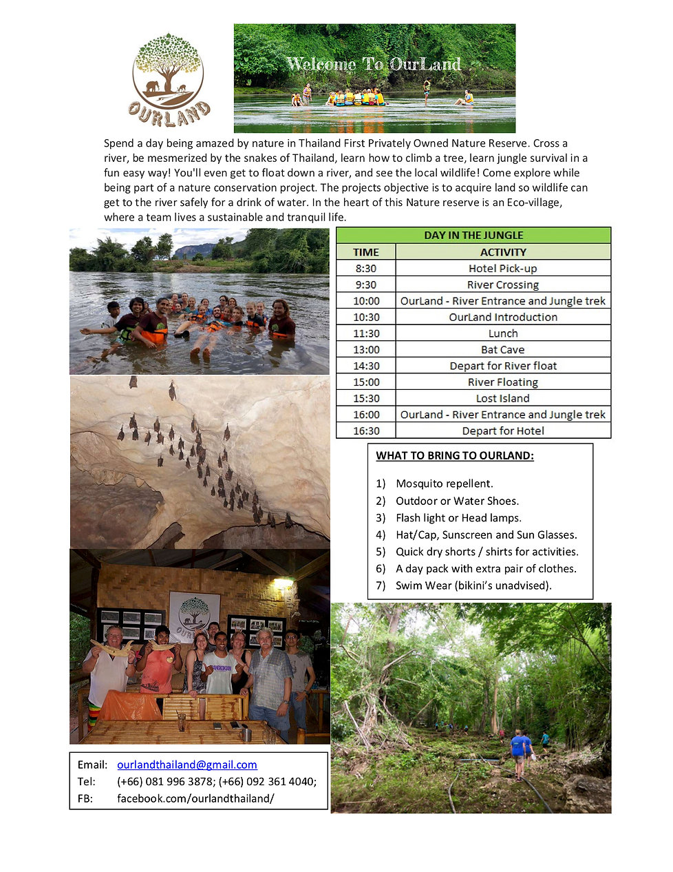 A Day in the Jungle - 2019 Website.jpg