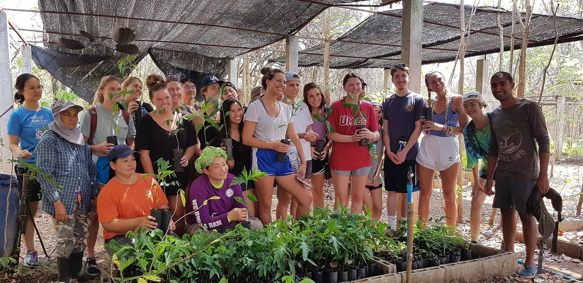 Walking Tree Travel Group