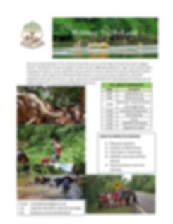All about Elephants - 2019 website.jpg