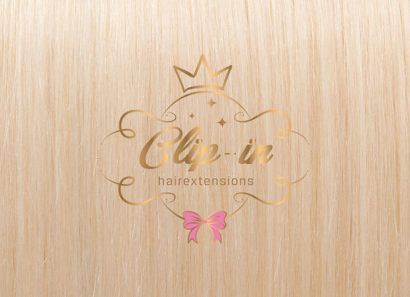 Ash Blond clip-in extensions 60 - 270 gram - 60cm