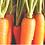 Thumbnail: Boite à Jardins 4'x1'