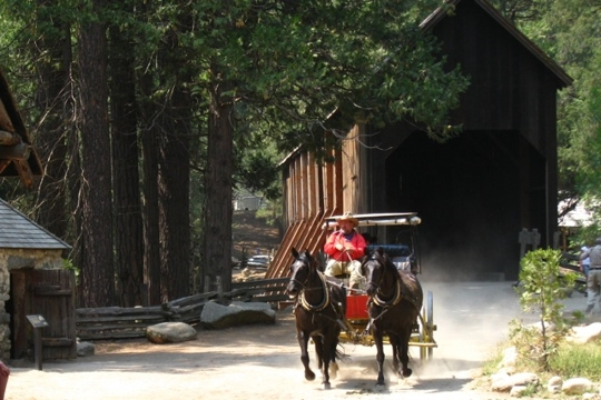 Pioneer Stagecoach Ride