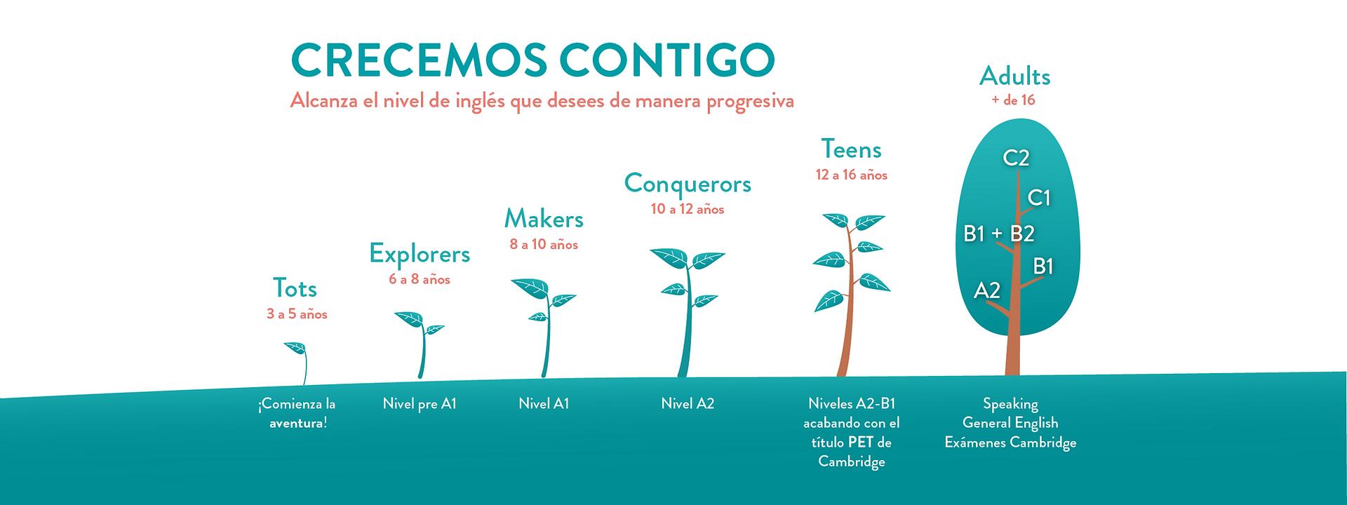 arboles austados 2020.png