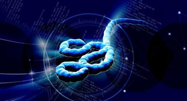 ebola-virus (1).jpg