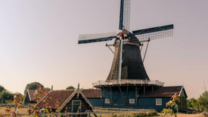 홍유신이 네덜란드에 온 까닭은?