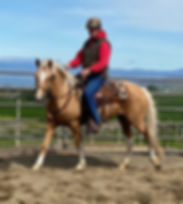 Blonde Under Saddle (2).jpeg