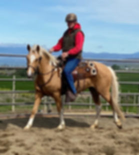 Blonde Under Saddle (2).jpeg