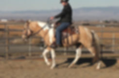 Trudy Riding2_Moment(10).jpg