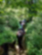 Celeste, trail ride.jpg