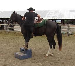 Dancer mount_Moment (2).jpg