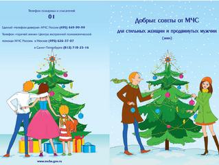 Меры безопасности в период новогодних и Рождественских праздников