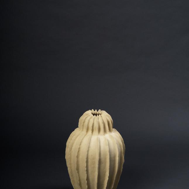 .gefäss cactus 50