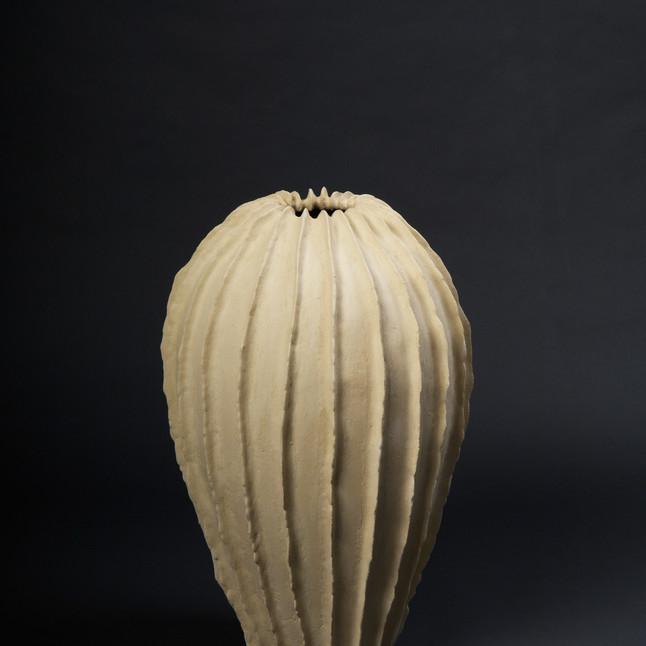 .gefäss cactus 90