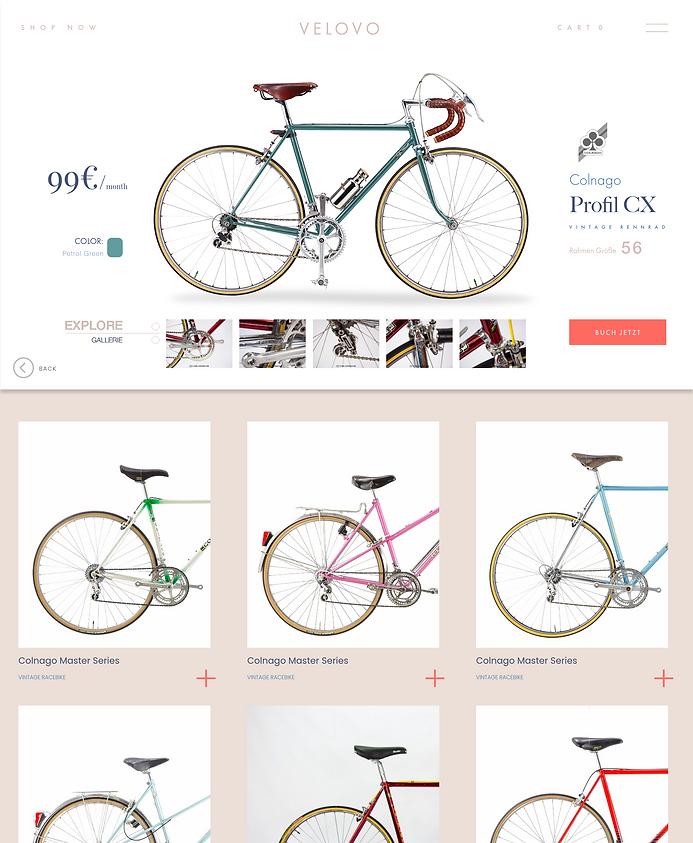 Bike Details.png