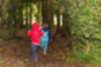 Forest Boys running.jpg
