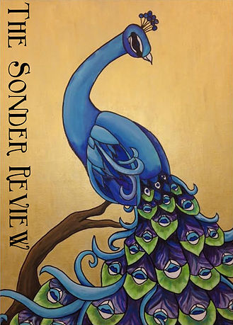 The Sonder Review Issue 2