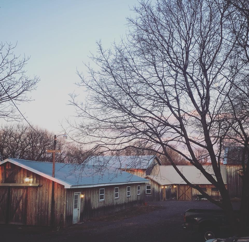 farm spring evening