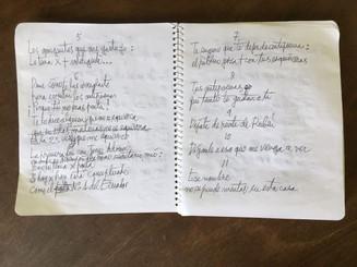 Empiezan a restituir los manuscritos de Nicanor Parra