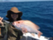cairns fishing adventures, fishing charters cairns, Queensland, Australia, ナニガイ ケアンズ フィッシング アドベンチャーズ.JPG
