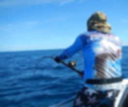 cairns fishing adventures, fishing charters cairns, Queensland, Australia, cairns fishing charters