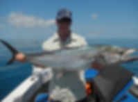 cairns fishing adventures, fishing charters cairns, Queensland, Australia, Spanish Mackerel cairns fishing adventur