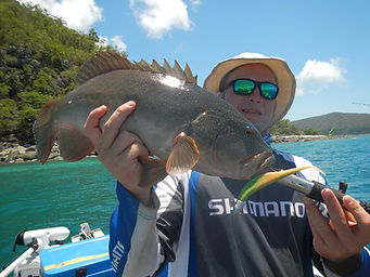 cairns fishing adventures, fishing charters cairns, Queensland, Australia, Coral Trout