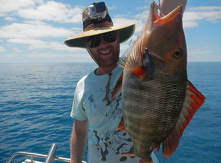 cairns fishing adventures, fishing charters cairns, Queensland, Australia, cairns fishing trips on the Great Barrier Reef with Cairns fishing Adventures