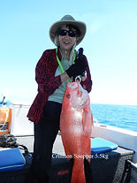cairns fishing adventures, fishing charters cairns, Queensland, Australia, Chinese Lady | Nannygai | cairns deepsea fishing charter | cairns fishing | Barramundi, cairns fishing charters| cairns reef fishing| cairns fishing adventures | Cairns fishing trips | Cairns fishing Tours | Cairns fishing |