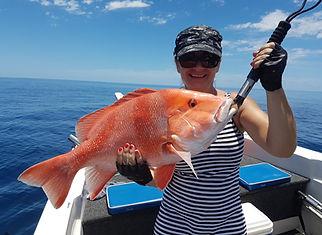 cairns fishing adventures, fishing charters cairns, Queensland, Australia, Red Emperor cairns fishing adventures.