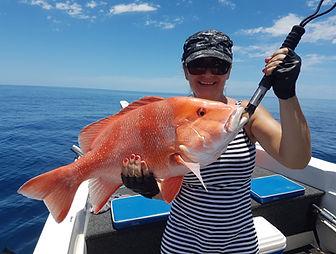 cairns fishing adventures, fishing charters cairns, Queensland, Australia, Red Emperor cairns fishing adventures.jp