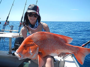 cairns fishing adventures, fishing charters cairns, Queensland, Australia, Red Emperor cairns fishing adventures (2