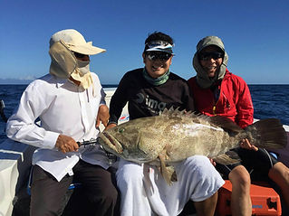 cairns fishing adventures, fishing charters cairns, Queensland, Australia, 3 Korean guys with Gold spot cod on cairn reef fishing trip | Barramundi, cairns fishing charters| cairns reef fishing| cairns fishing adventures | Cairns fishing trips | Cairns fishing Tours | Cairns fishing |